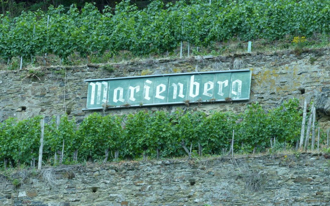 Weinerlebnis im Gülser Marienberg